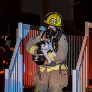 Спасение от пожара